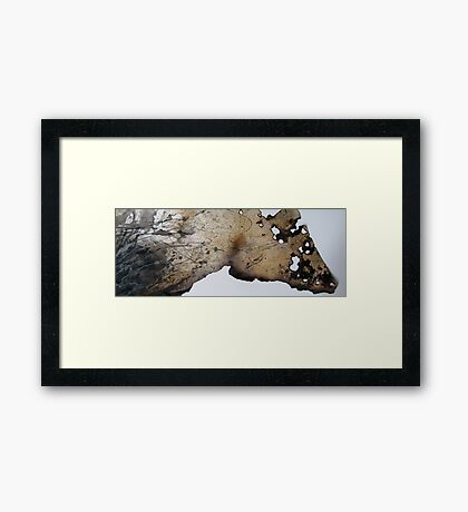 playing with fire . . . .  Framed Print
