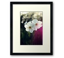 In the meadow... Framed Print