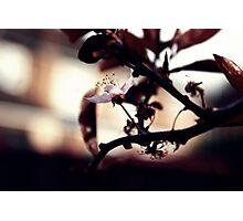 Empty.... Photographic Print
