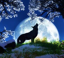 Howl at the Moon by SandraWidner