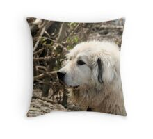 Goliath Intent '13 Throw Pillow