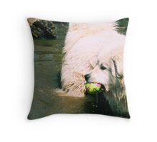 Goliath What Was That?  Throw Pillow