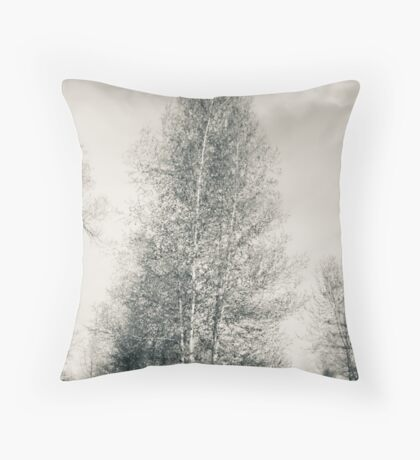 Birch Tree - Lou Campbell State Nature Preserve Throw Pillow