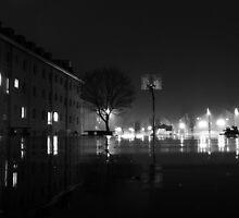 Night Walks by Sarah Ella Jonason