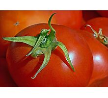 Ripened Red On the Vine Photographic Print