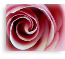 Swirl of Pink Rose Canvas Print