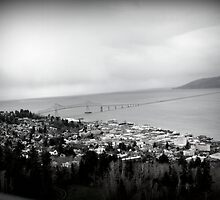 view from the Astoria Column Astoria–Megler Bridge by Dawna Morton