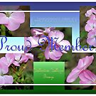 Banner - CC - Proud Member by DesignsbyApril