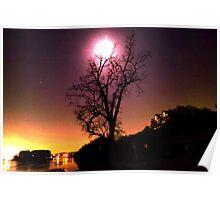 Moonlit Tree Poster