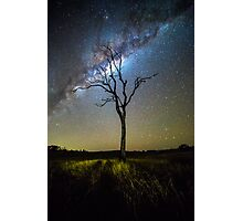 Flanagan Reserve Milky Way Photographic Print