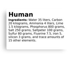 The average ingredients of an adult human body Canvas Print