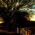 Golden Gateway by mlphoto