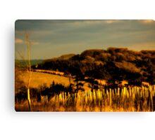 Golden Vista Canvas Print