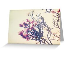 The Crowning Glory of Spring Greeting Card