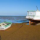 High & Dry, Urangan Boat Harbour, Queensland by Adrian Paul
