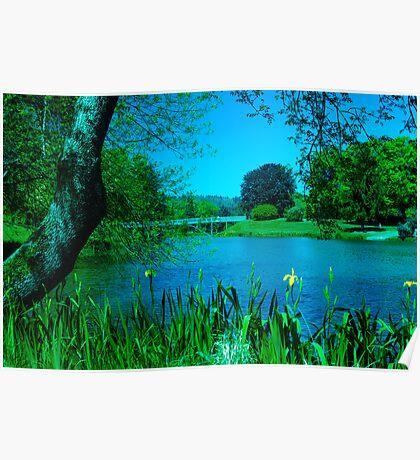 Lake Sacajawea, Longview, Washington, USA Poster