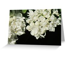 Formal Flowers Greeting Card