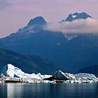 Alaska - Columbia Glacier by Nancy Richard