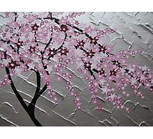 cherry blossom tree art with white and pink- japanese painting Photographic Print