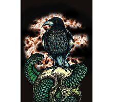 Lonely Crow Photographic Print