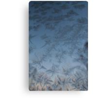 Frost on window. Sunset. Canvas Print