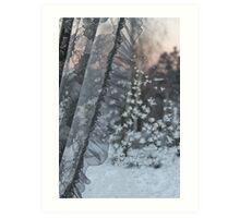 Frost on window. Sunset. Art Print