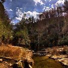 Laurel Creek at Jocassee by DHParsons