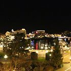 The Inner Harbour at Night by islandphotoguy