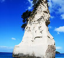 Te Hoho - Cathedral Cove - New Zealand by Heiko Voss
