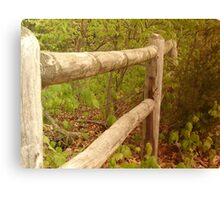 Fence in the Woods Canvas Print