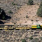 Virginia and Truckee Railroad,Virginia City,Nevada USA by Anthony & Nancy  Leake