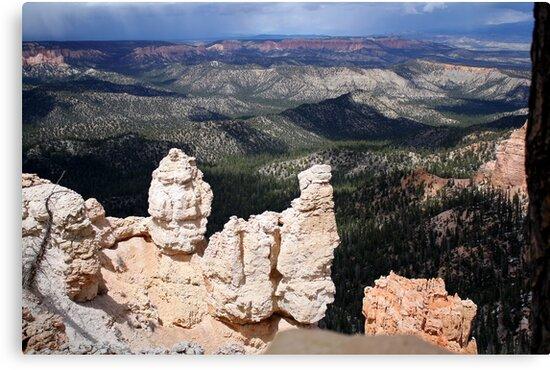 Bryce Canyon National Park1,Utah,USA by Anthony & Nancy  Leake