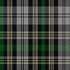 02304 Dalgliesh Dress Clan/Family Tartan Fabric Print Iphone Case by Detnecs2013