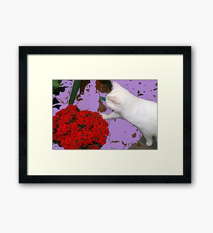 Playing with leaves and flowers Framed Print