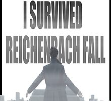 Reichenbach Fall by thescudders