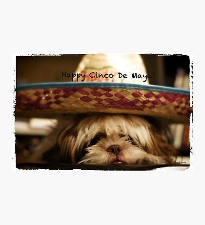 Happy Cinco De Mayo Photographic Print