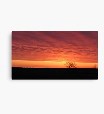 Blazing Plains Canvas Print