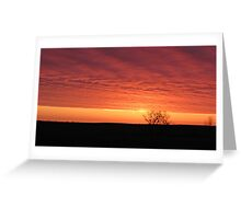 Blazing Plains Greeting Card