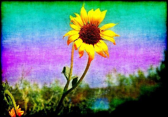 grunge-sunflower by angeldragon069