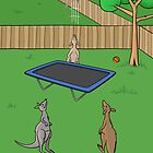Kangaroo Trampoline Bounce by Thingsesque