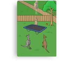 Kangaroo Trampoline Bounce Canvas Print