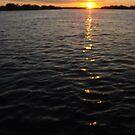 African Sunset #4 by Pauline Adair