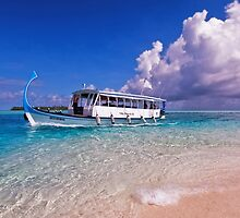 In Harmony with Nature. Maldives by JennyRainbow