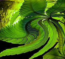 Leaf Twist by FloraDiabla