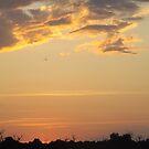 African Sunset #6 by Pauline Adair