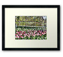 Keukenhof Park. Framed Print