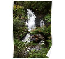 """Rainforest Cascade"" Poster"