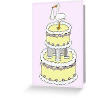 Congratulations on the birth of  your new baby . Greeting Card