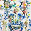GERMAN SHEPHERD.2 - watercolor portrait by lautir