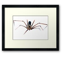 Arachnia in the Raw Framed Print
